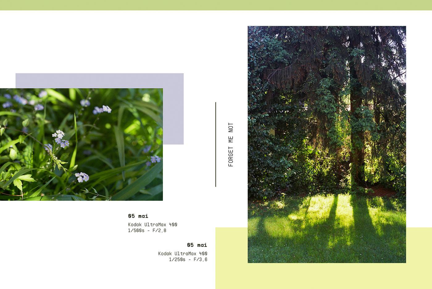 365project Photography  sachie nagasawa Film   Analogue kodak fujifilm agfa vista lay-out Nikon