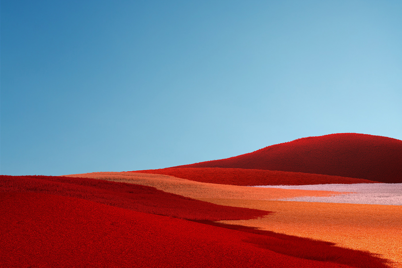 Microsoft Surface Wallpapers On Behance