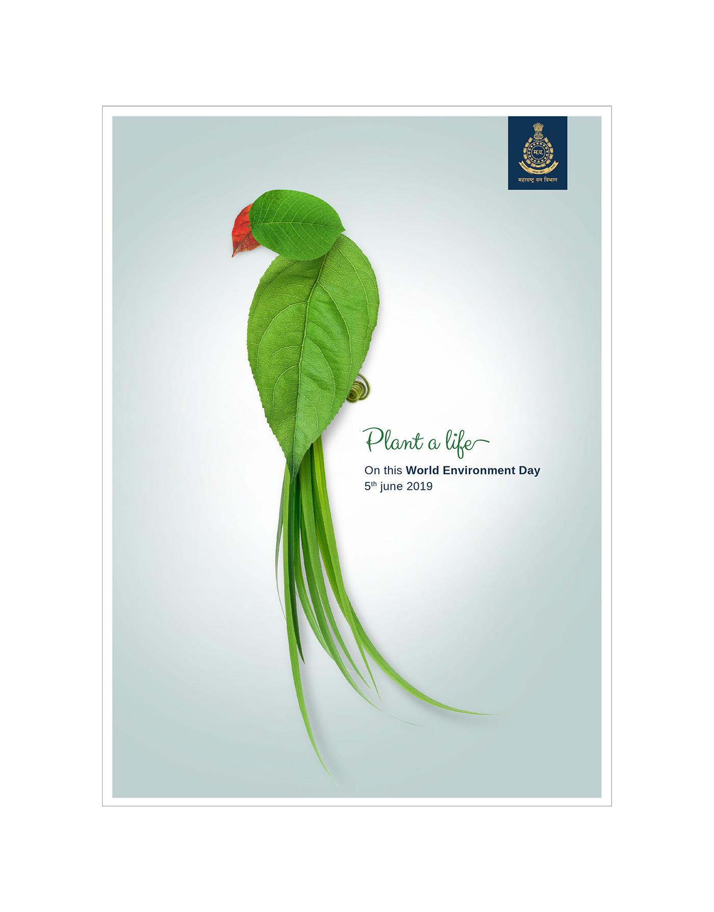 World Environment Day, Tree Plantation on Behance