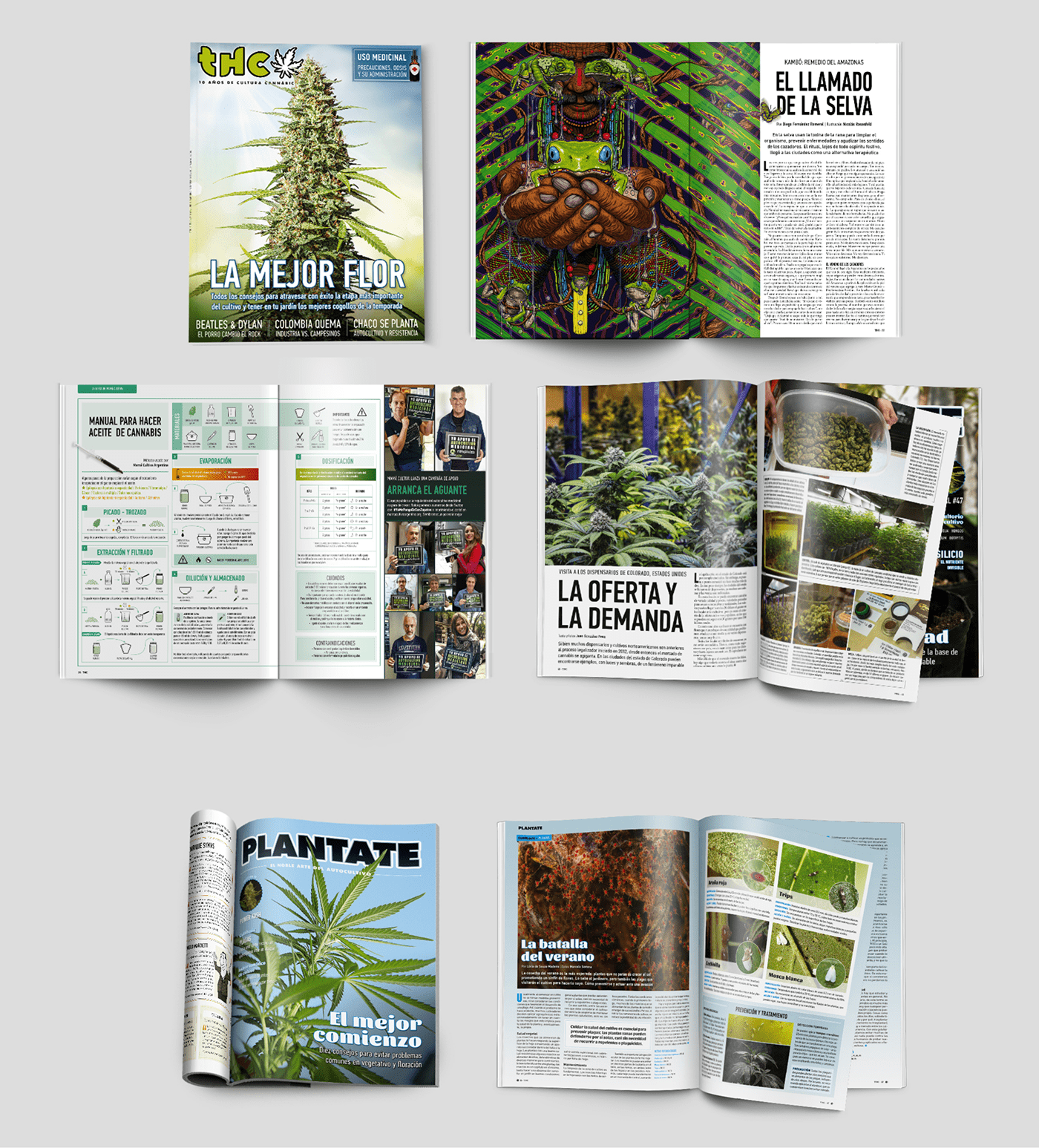 editorial cannabis marihuana buenos aires revista magazine weed