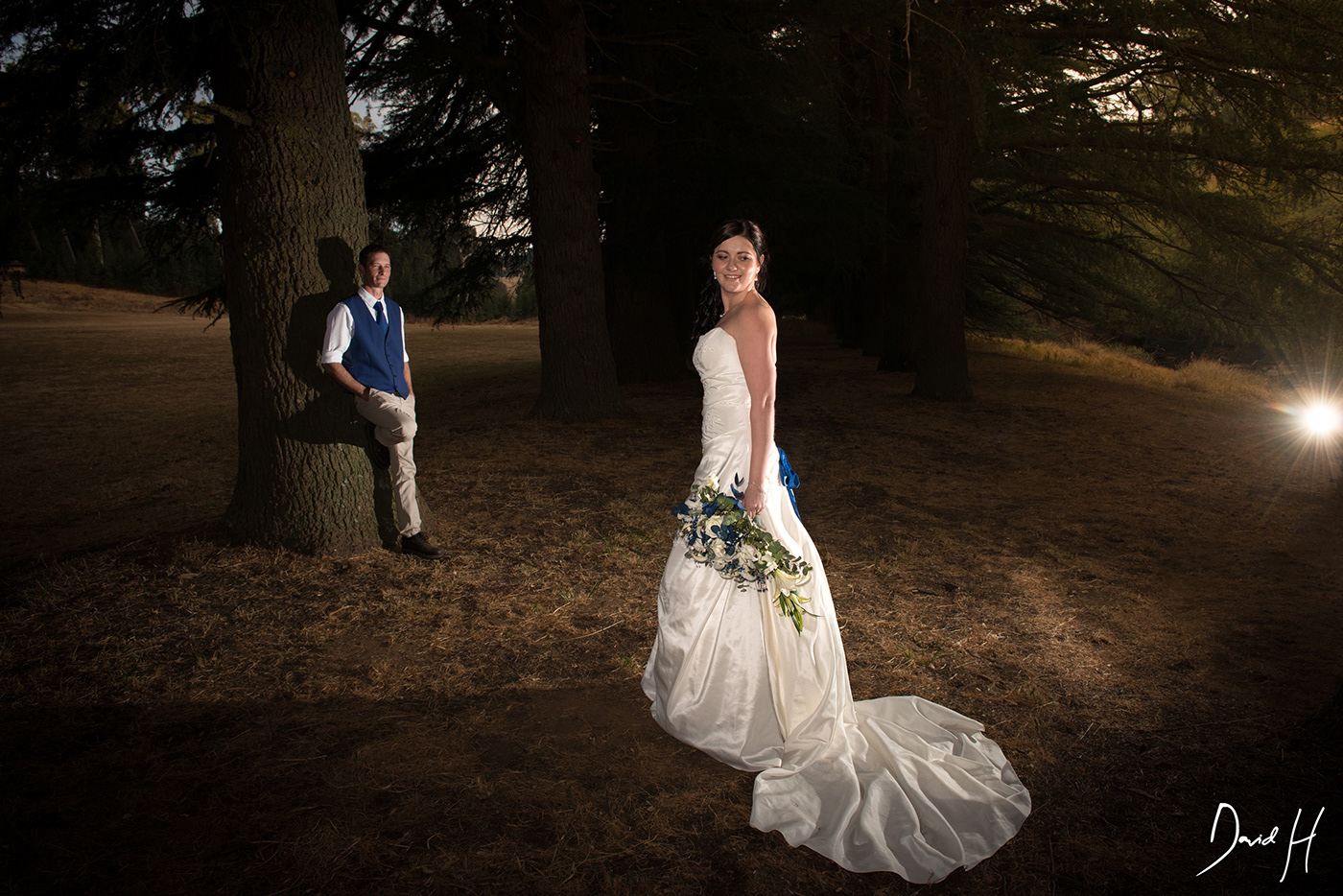 Image may contain: wedding dress, tree and outdoor