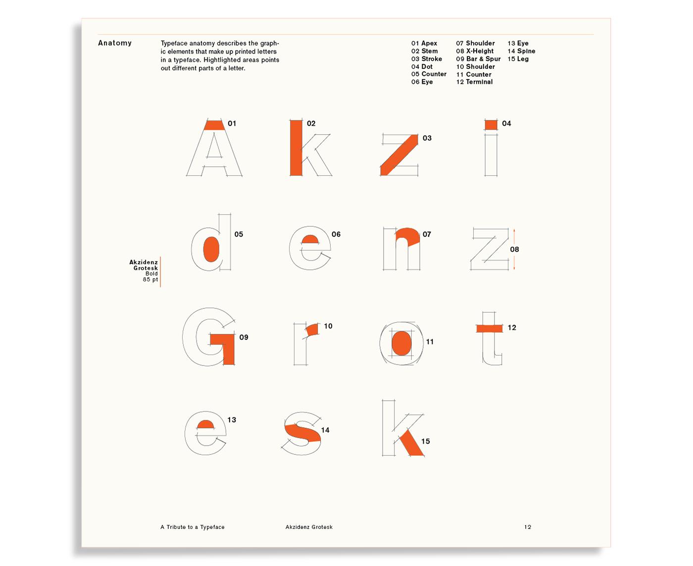 card set infographic akzidenz grotesk infographic design type underground train alphabet orange poster specimen Type Specimen glyph
