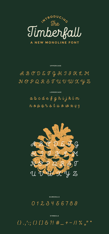 type Typeface font monoline Script typography   graphic design vintage