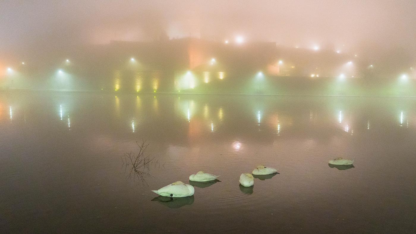Image may contain: water, fog and lake