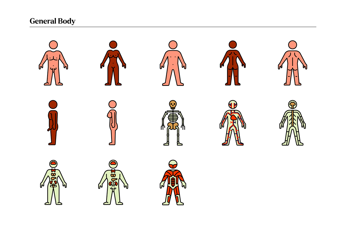 anatomy body healthcare Icon ILLUSTRATION  medical