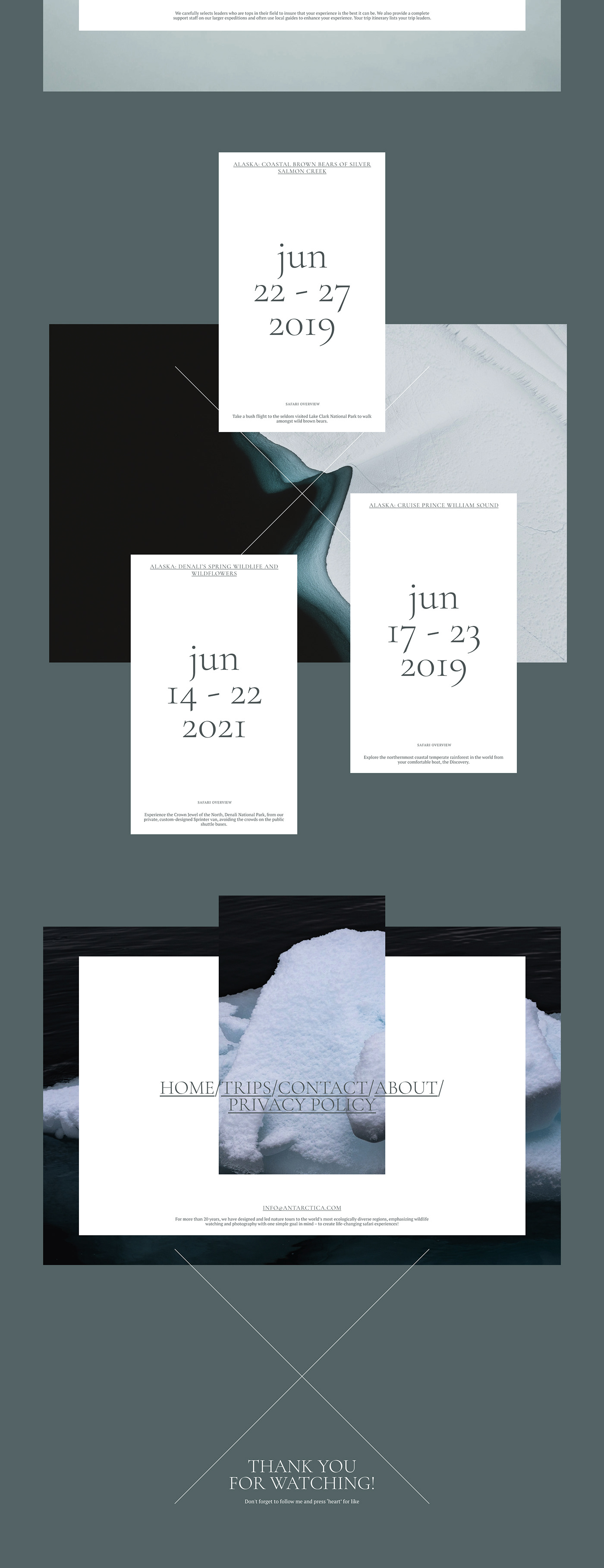UI,ux,Ecology,safari,winter,snow,ice,interaction,typography  ,grid