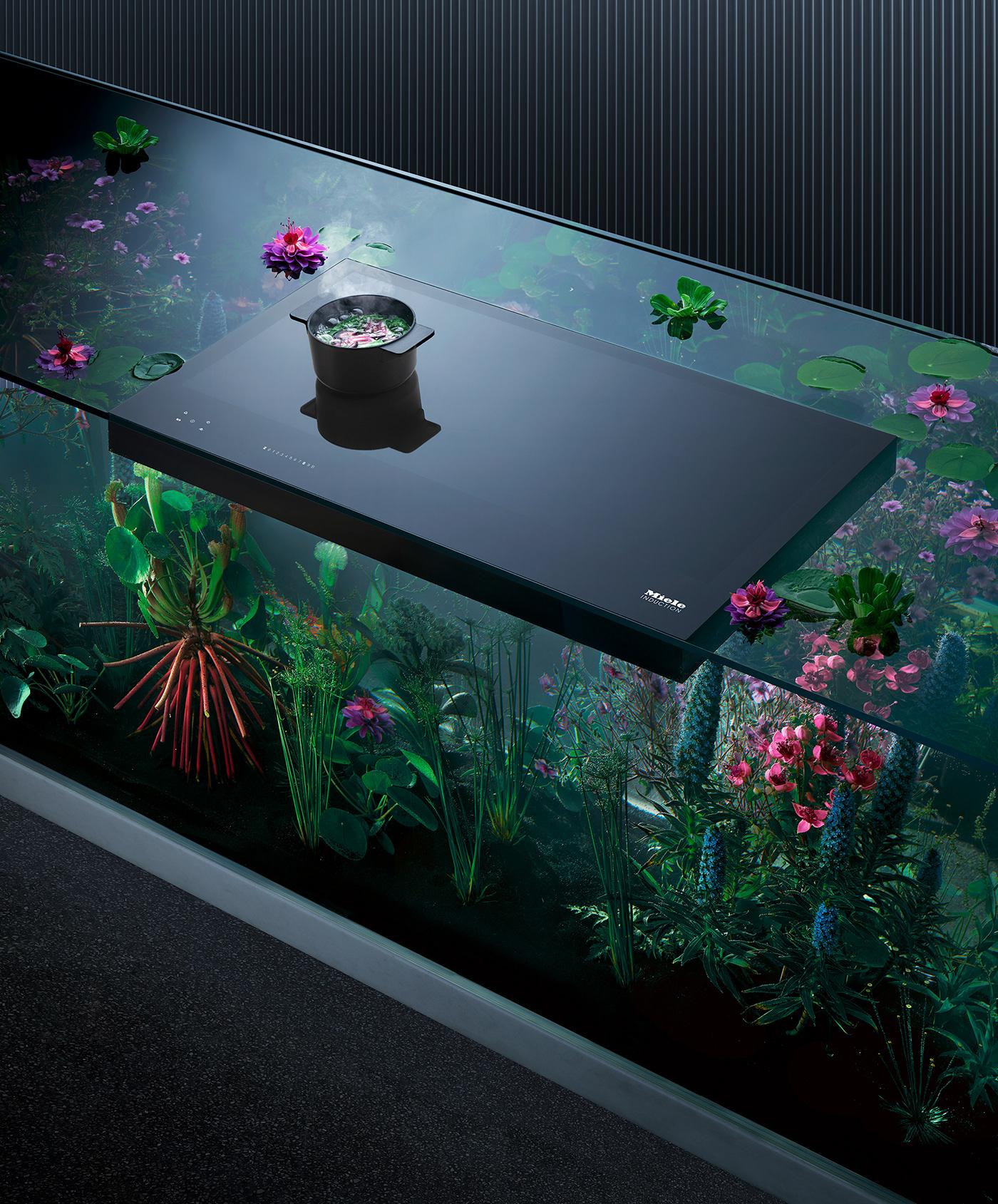 Image may contain: indoor, screenshot and aquarium
