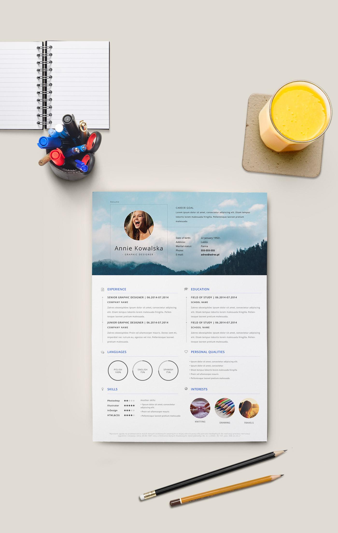 free minimalistic resume  cv