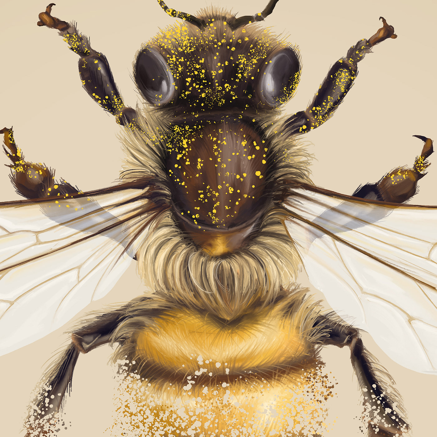 bees Disappear ecosystems ILLUSTRATION  photoshop Pollen science stile