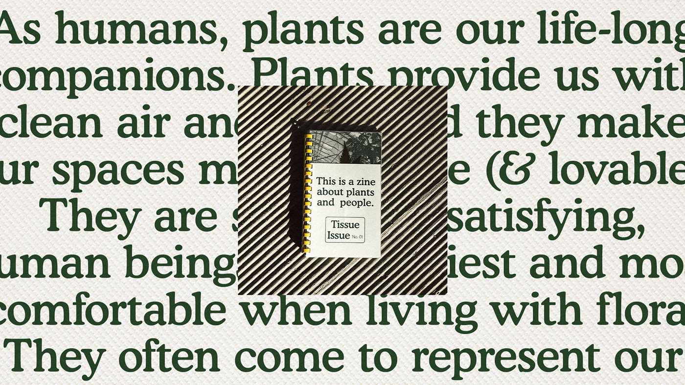 plants ethnobotany editorial Zine  adobeawards InDesign editorial design  mexico studentwork Riso