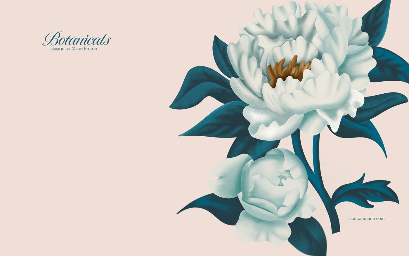coquelicots Flowers peonies pivoines poppies Procreate Roses