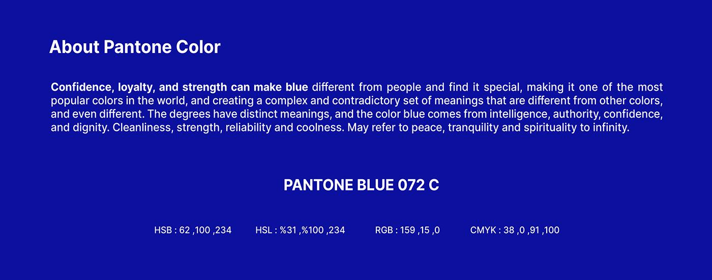 Advertising  blue brand brand identity delivery identity Logistics logos shipping Transport