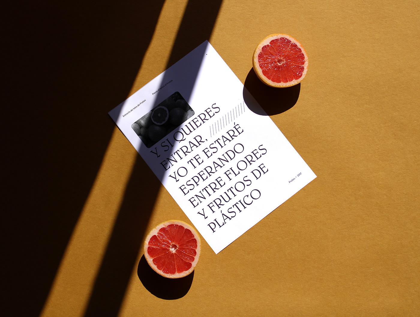 music Photography  art direction  graphic design  typography   Fotografia set fruits color