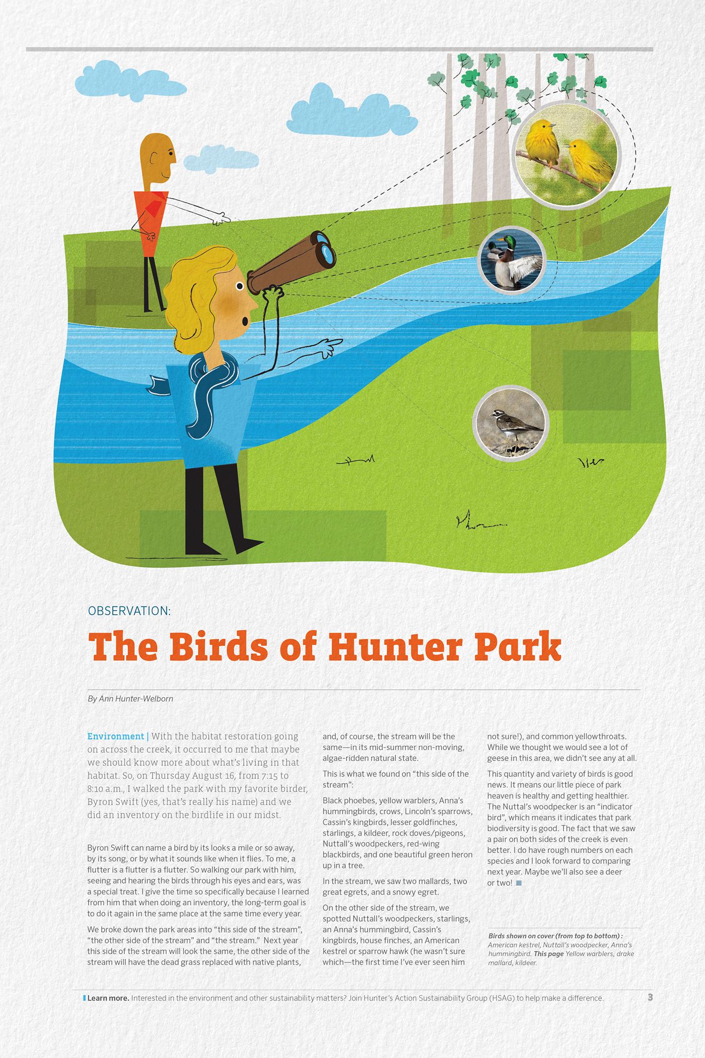 Hunter Hub: HR Newsletter Rebrand on Behance