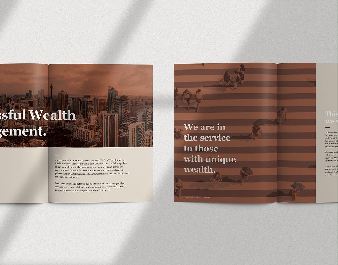 Corporate Profile brochure publication financial InDesign print Booklet elegant corporate business