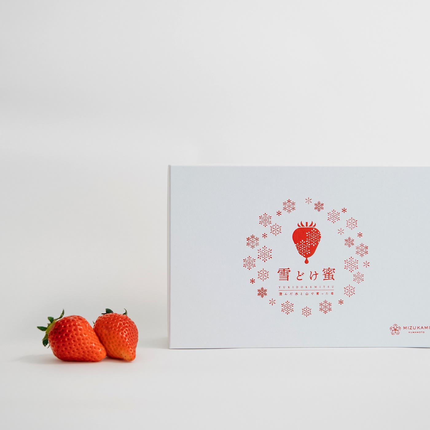 有獨特感的37款日式logo設計欣賞
