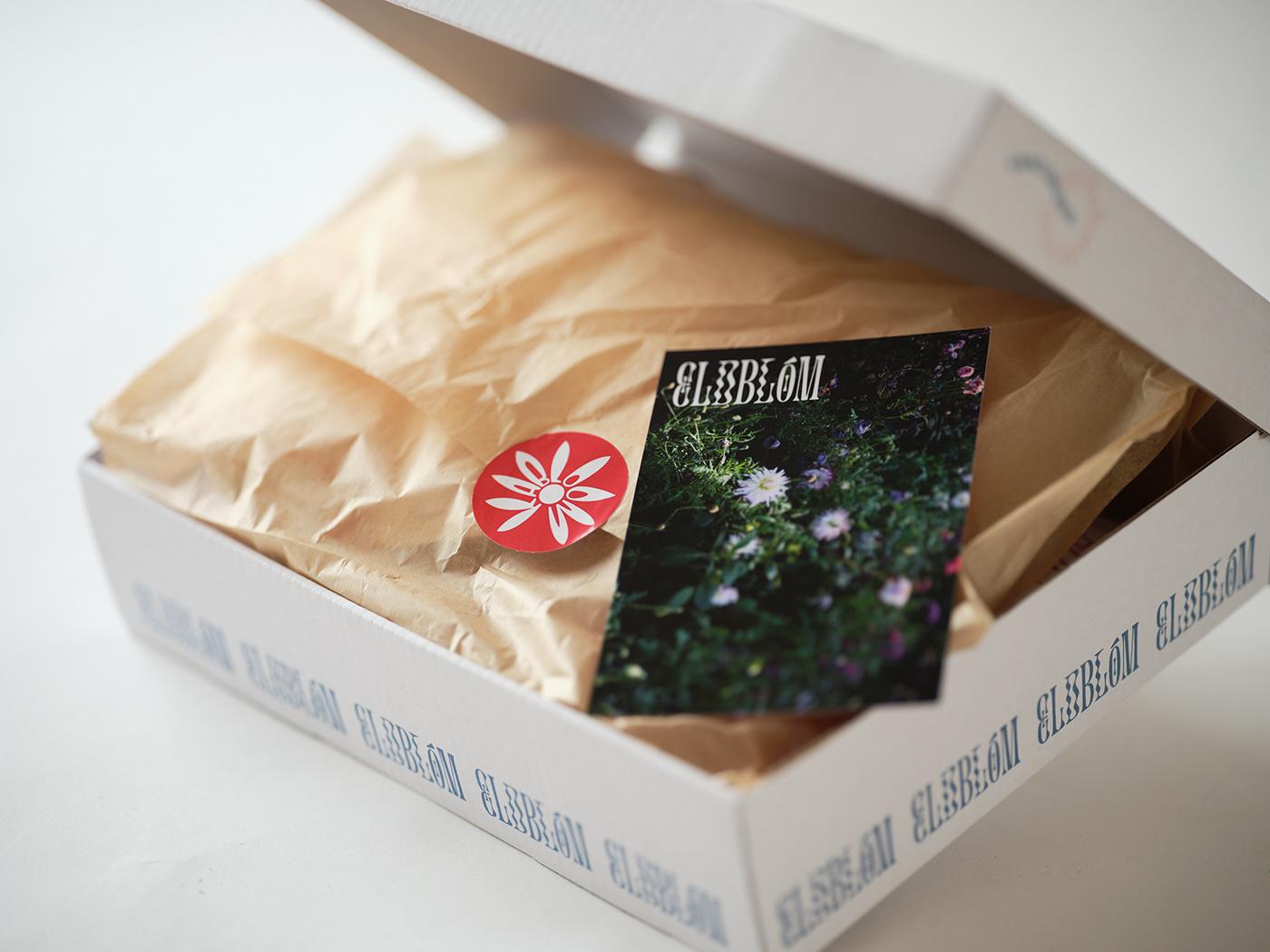 eldblóm fireworks Flowers hanabi Packaging