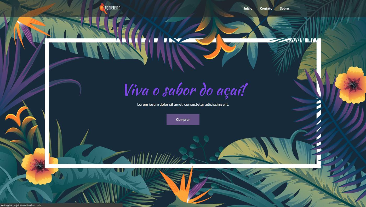 acai Brasil CastCodes Web Design
