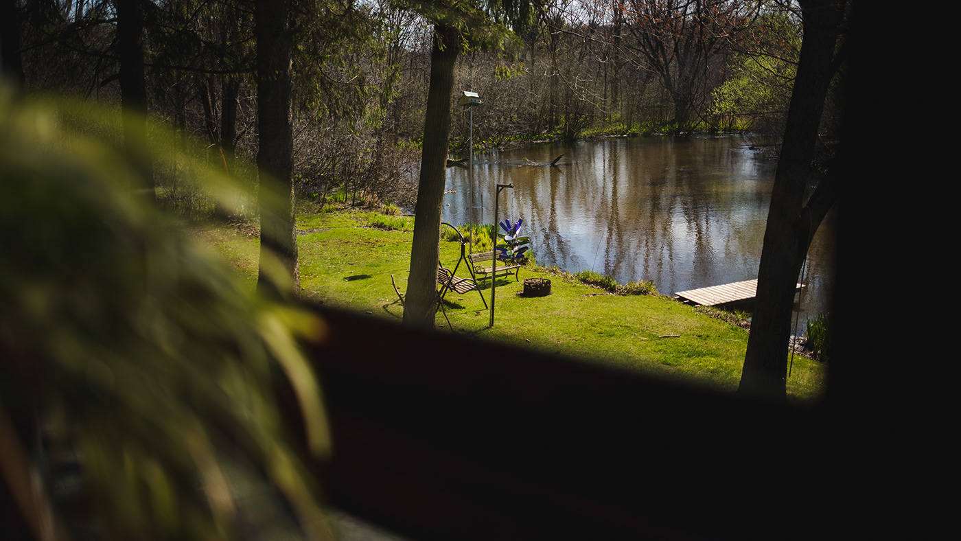 Image may contain: tree, grass and lake