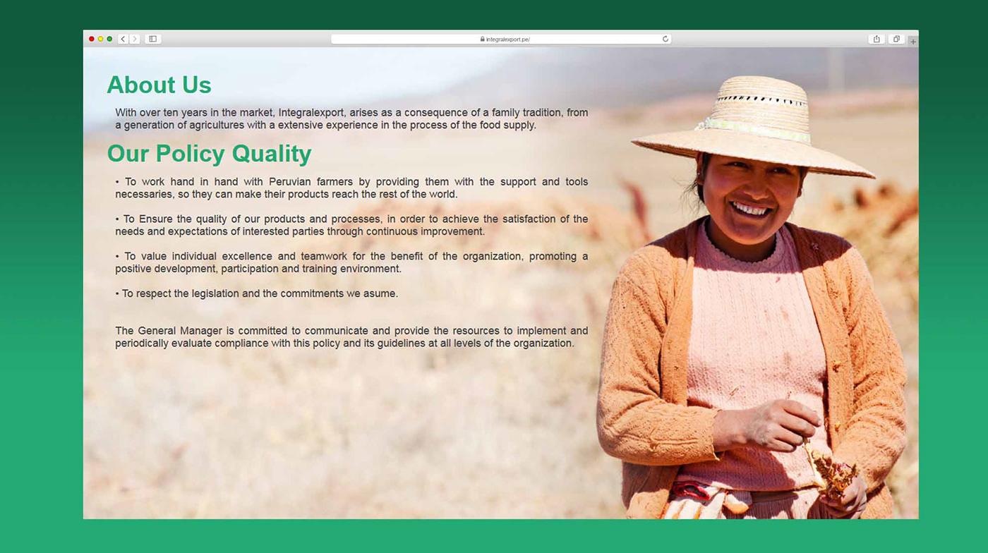 desarrollo web Diseño web diseño gráfico integral export Alimentos super food
