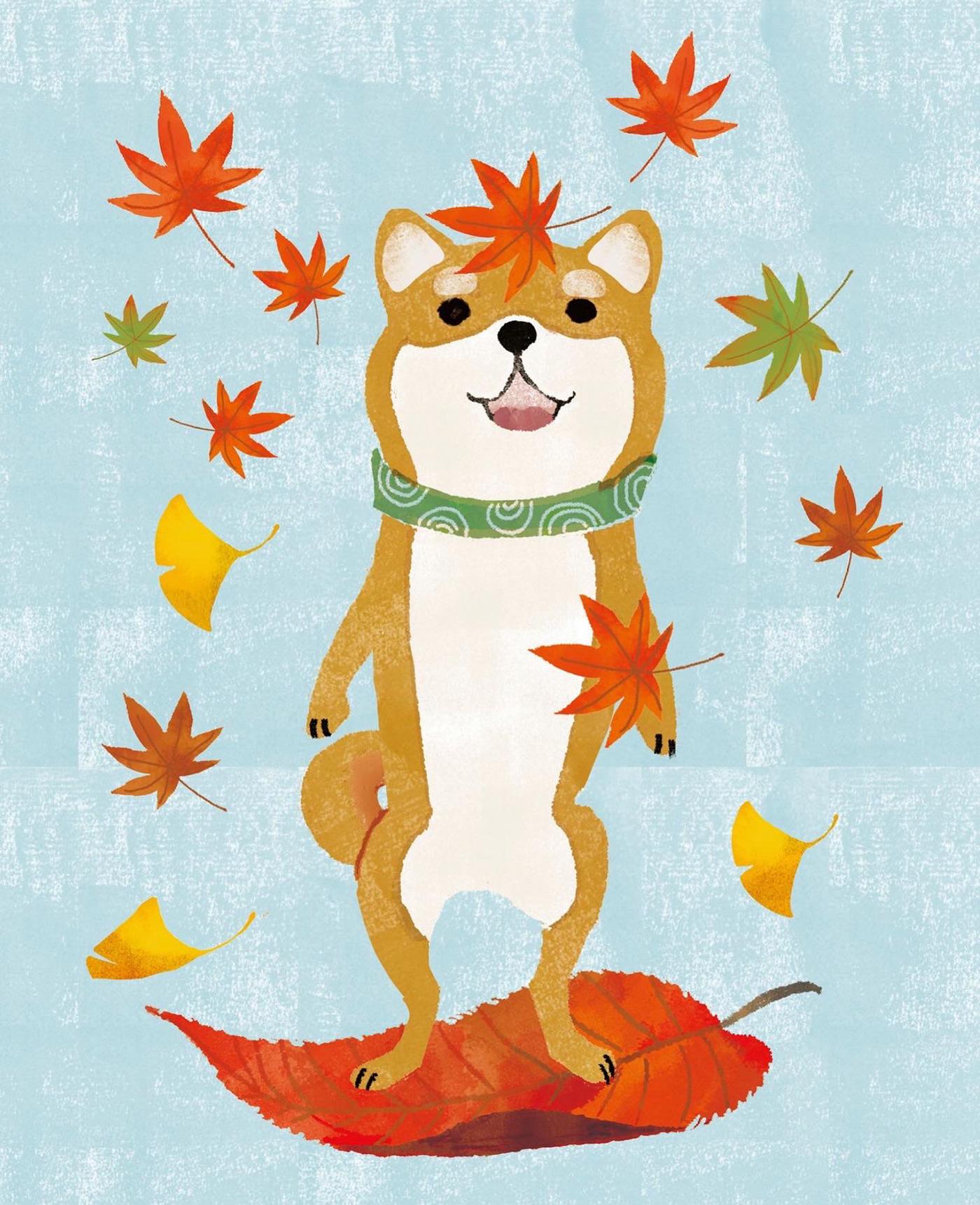 animal book book cover illustration children dog kids book shibainu イヌ 動物 挿画 柴犬 装丁画
