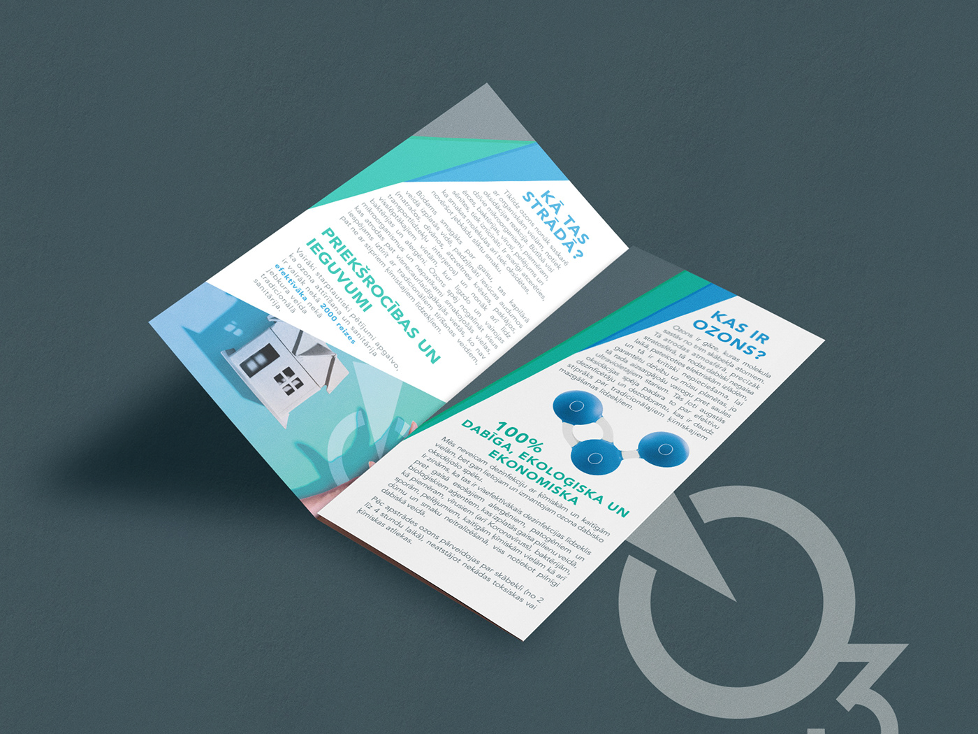 Brand Design branding  graphic design  logo