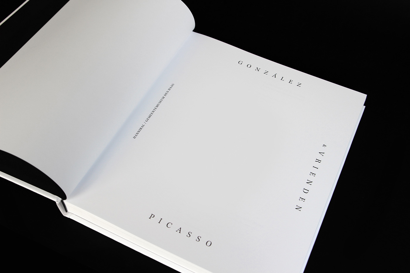 gonzales Picasso Bookdesign Brancusi coverdesign Gemeentemuseum DenHaag timbisschop artbook catalog