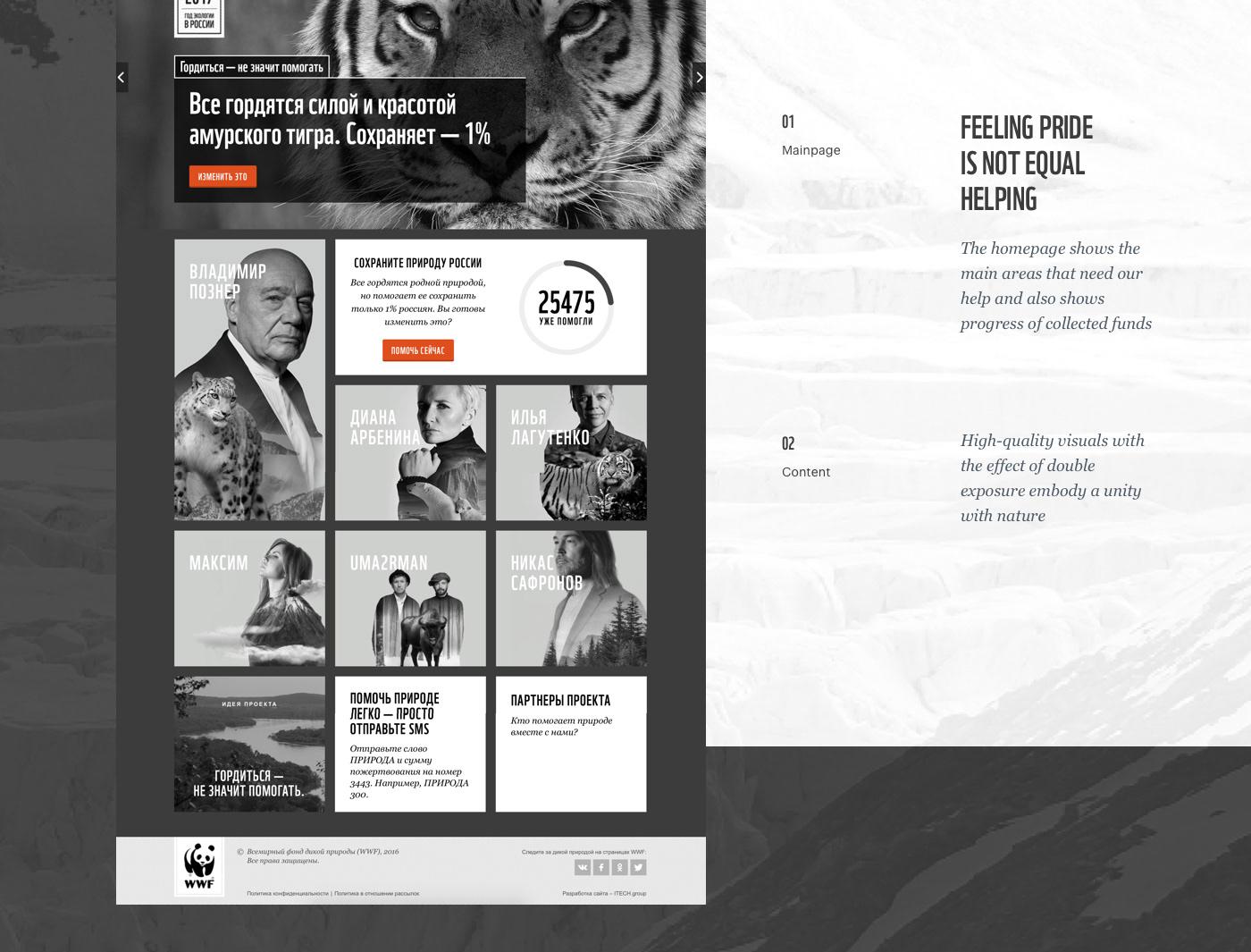 WWF animals bw donate Web UI ux minimal clean Minimalism
