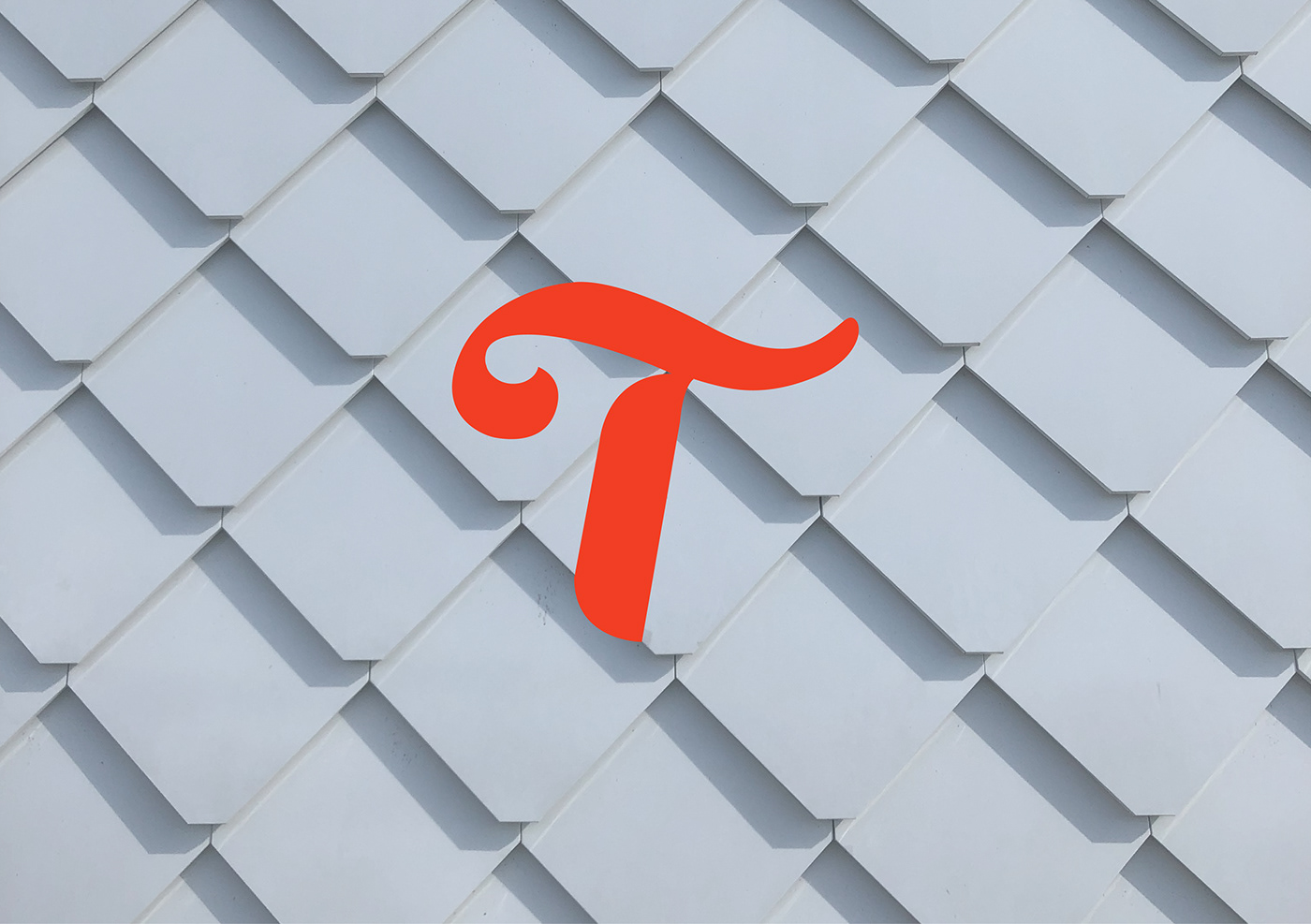 branding  brand identity logo Mockup Photography  stationary Packaging Retro Letterform custom type