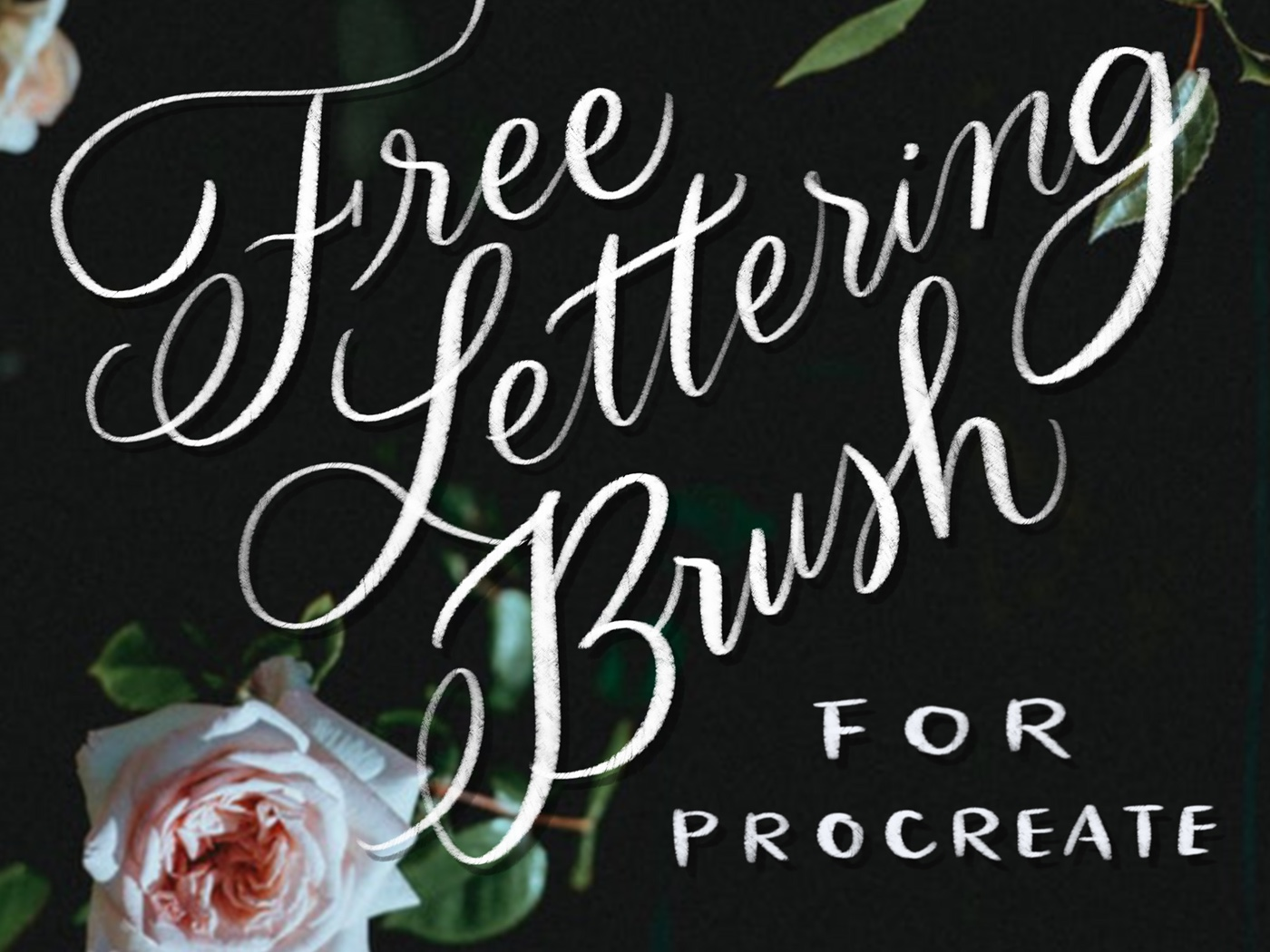 Free Procreate Brush A Lettering Calligraphy Freebie On Behance