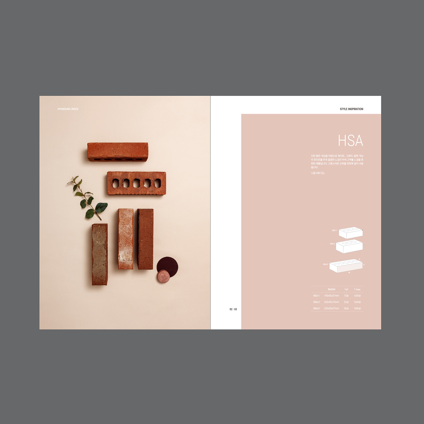 brochure graphics branding  graphic brand