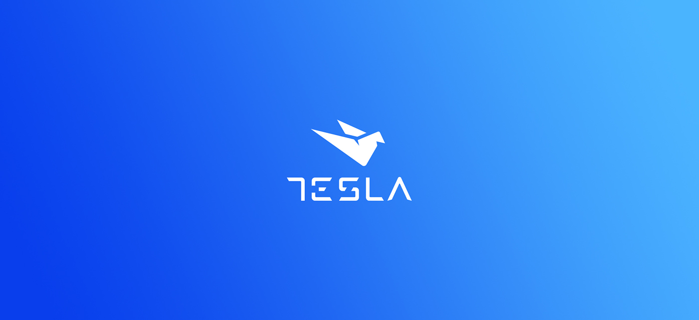 tesla identity branding  dove bird Technology electricity power blue