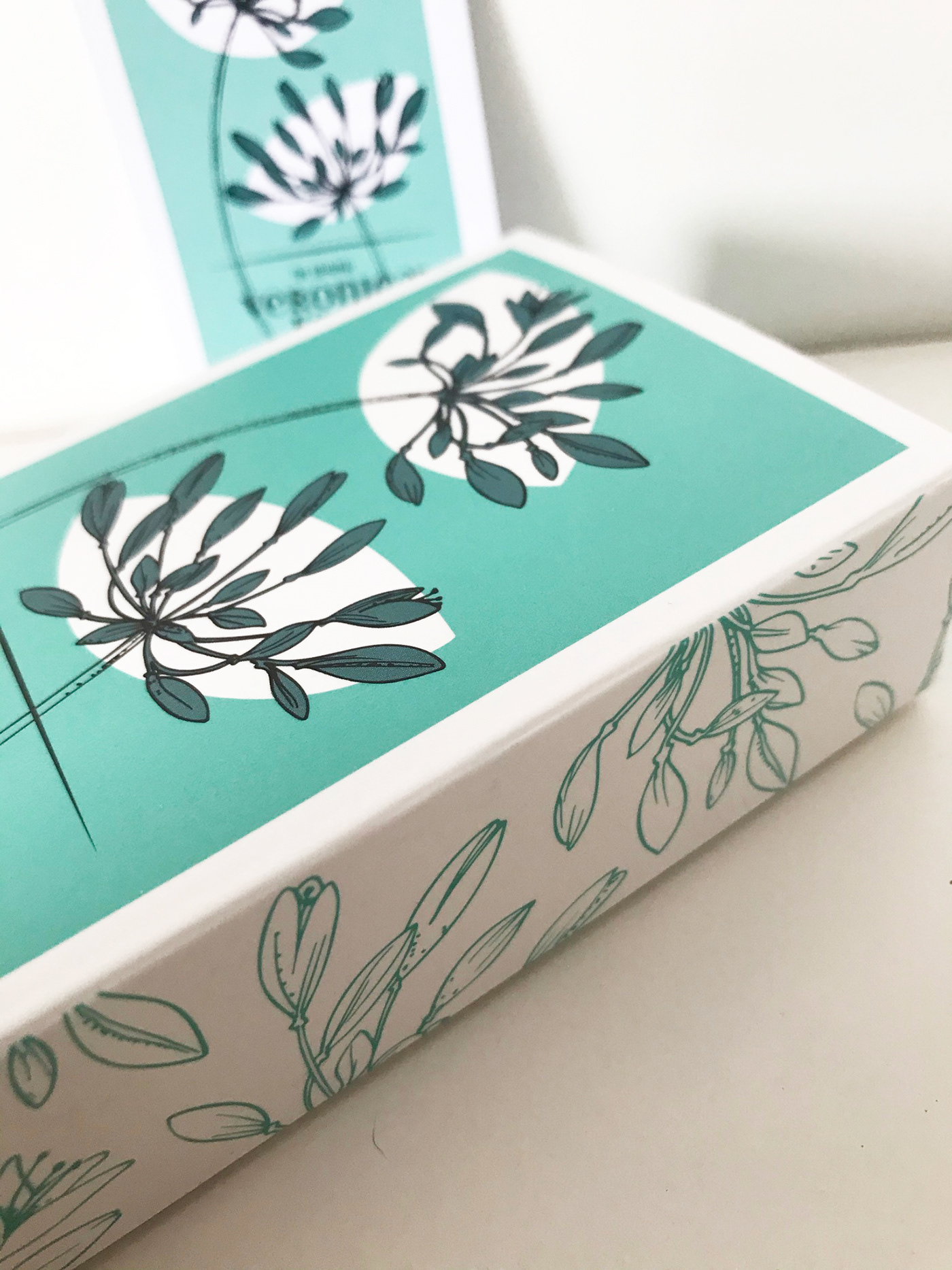 agapanthus branding  food and drink Fudge Isles of Scilly