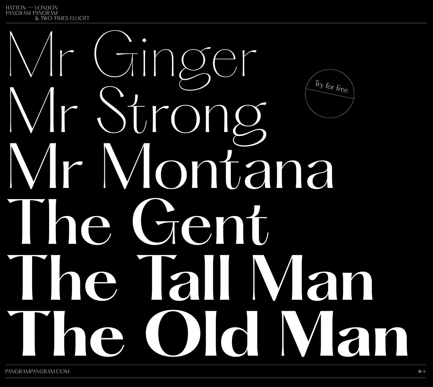 Typeface type design free Free font vintage serif Brutalist type font