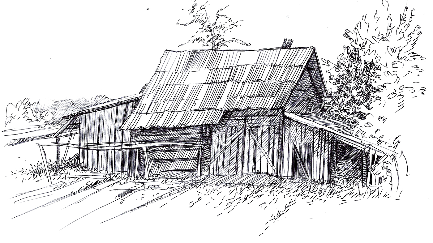 sketches from the cattle shed I want to begin a dairy farming project with six cows under the zero-grazing  system please teach me more about the standard zero grazing unit.