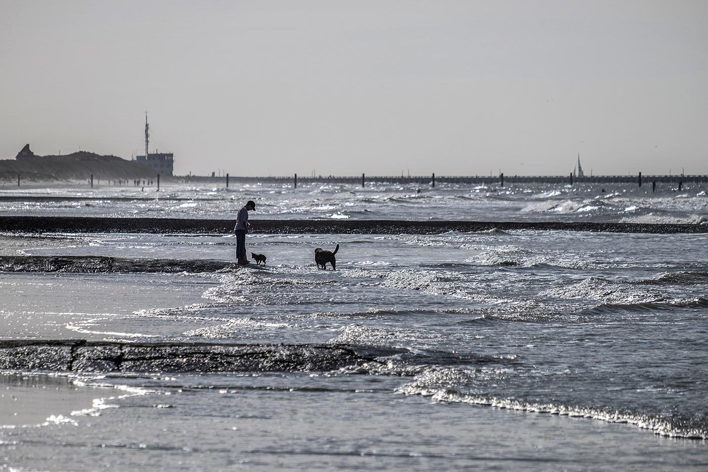 Ostend belgium sea city beach sand Castle MODERN SCULPTURES North Sea people