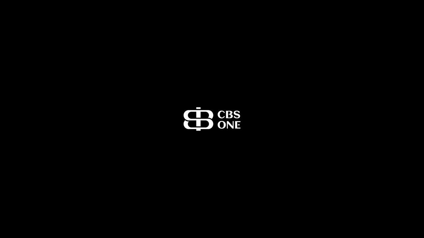 brand identity branding  logo Logo Design logofolio logos Logotype vector visual identity