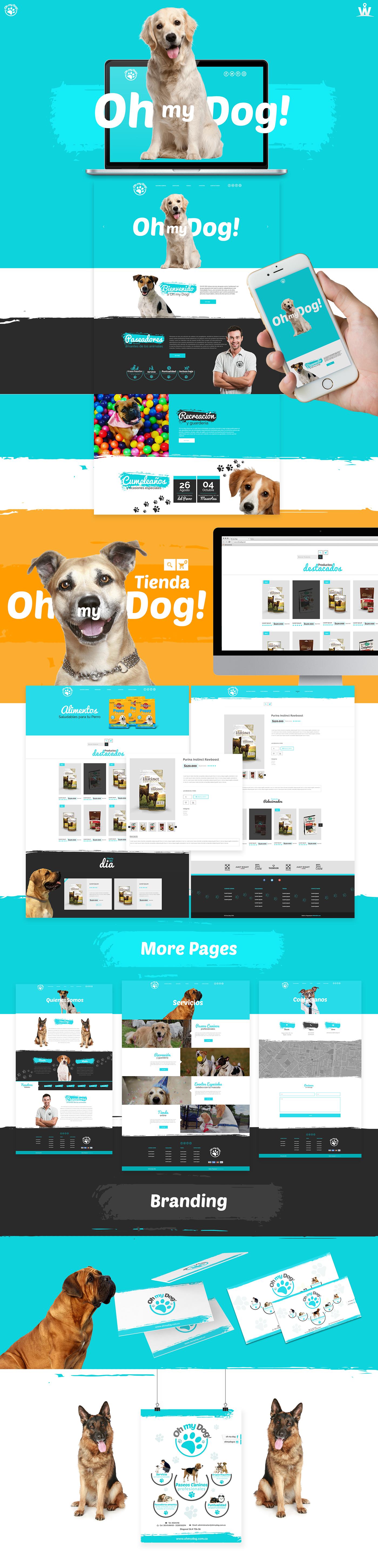 dog funny colors Webdesign Web