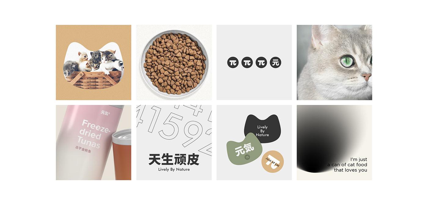 brand canned Cat graphic Pet pet food pet product pet shop