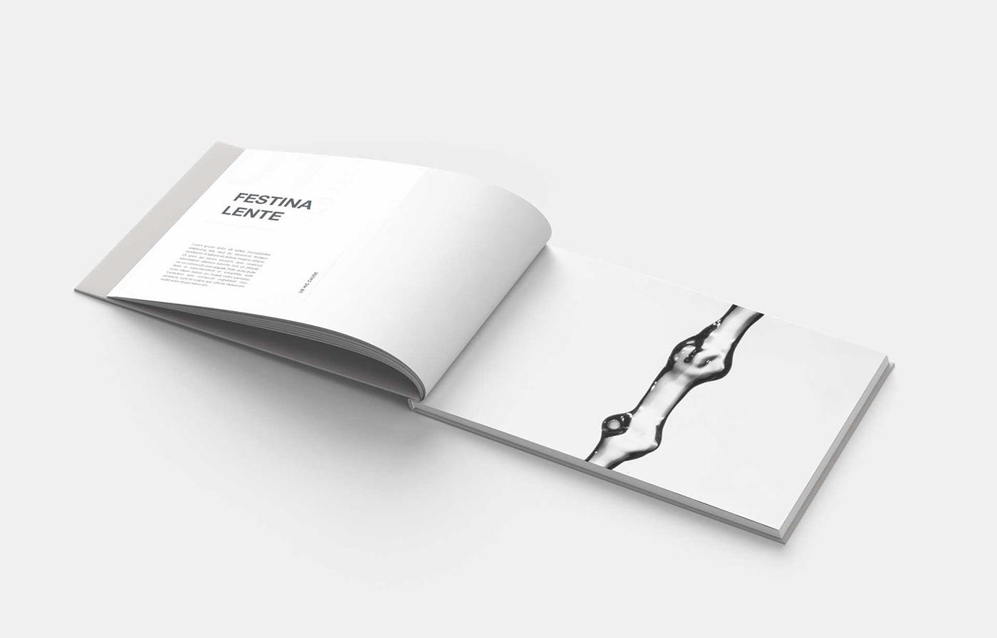 portfolio Layout InDesign book