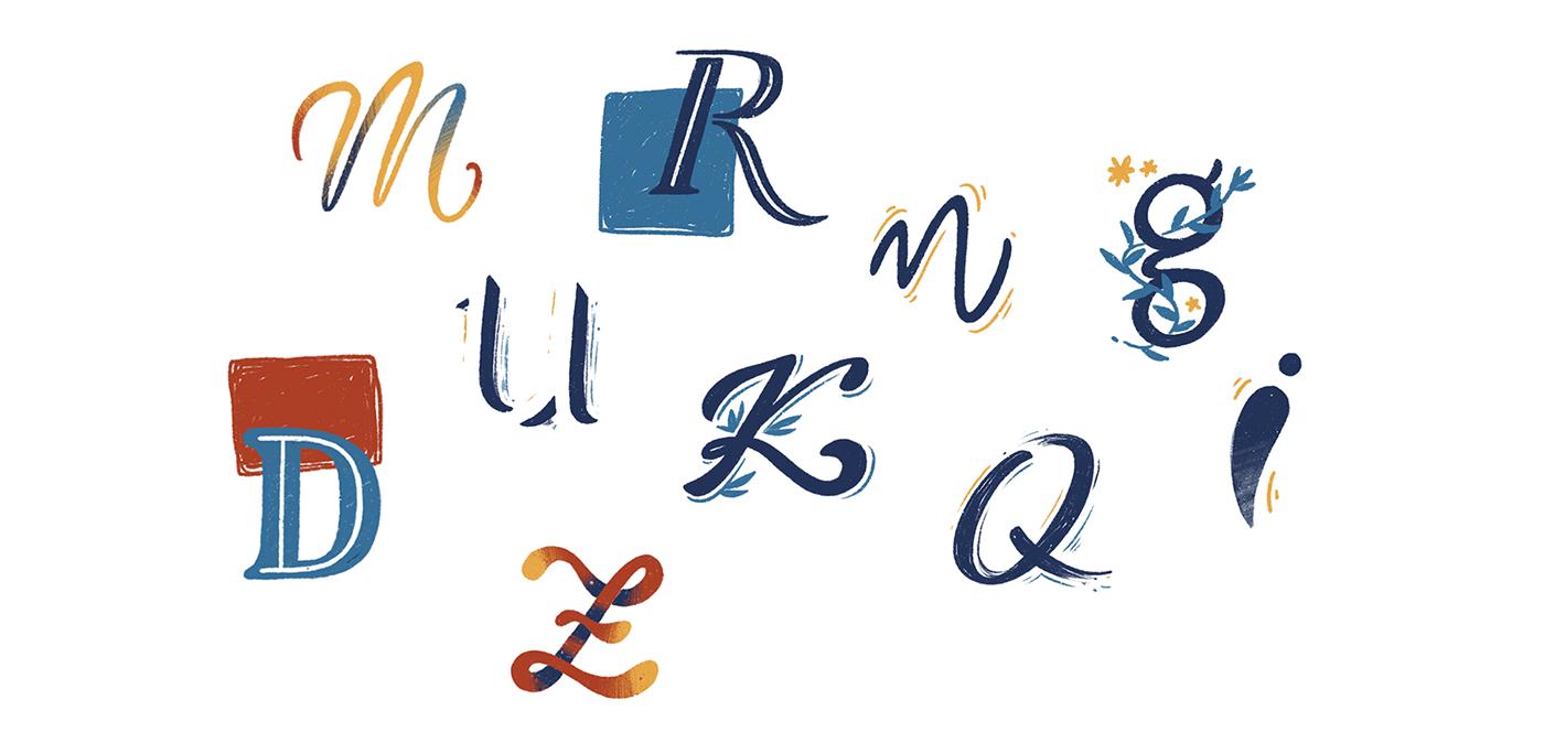 alphabet Calligraphy   handwrite handwriting illustrated letter design lettering letters