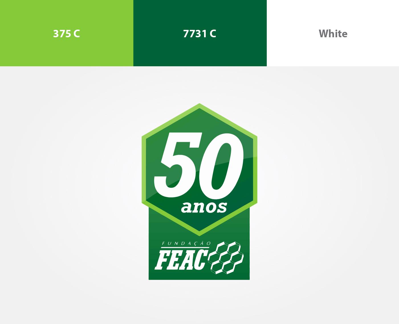 Selo logo FEAC Midia Festival 2013 ilustration