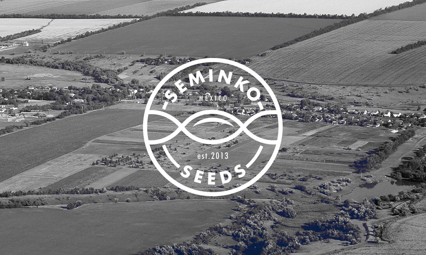 seed symbol Logotype Seminko brand Stationery Guadalajara mexico fields wordmark