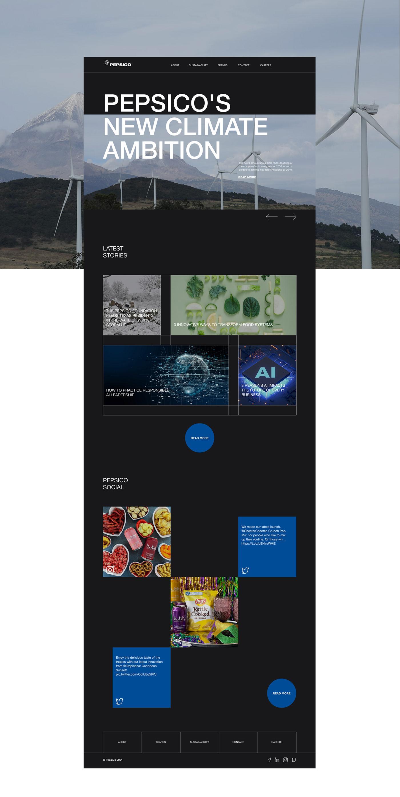 company corporate design pepsi pepsico redesign UI ux web-design Website