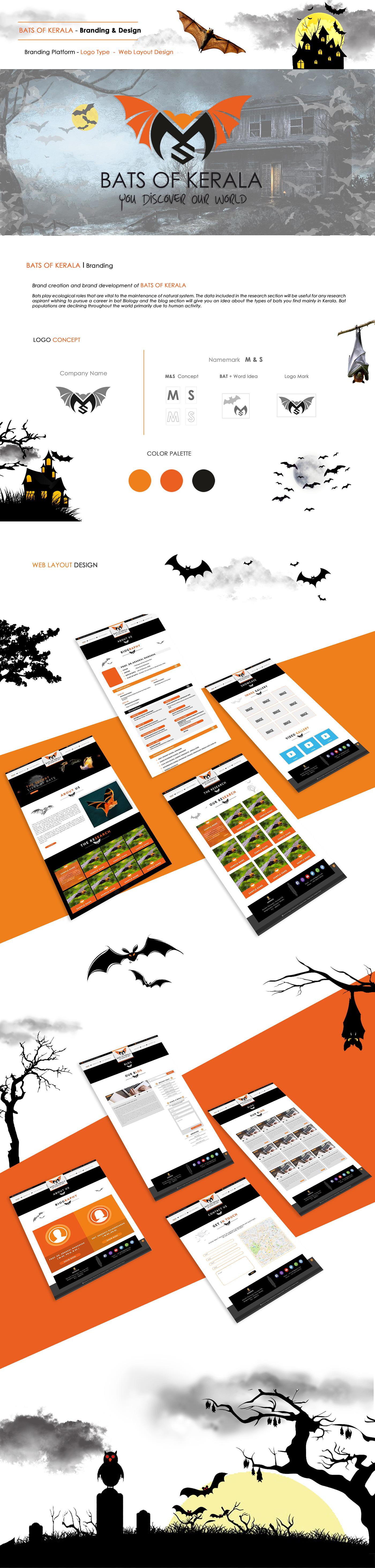 Bats kerala visual logo ILLUSTRATION  color Website art concept graphics