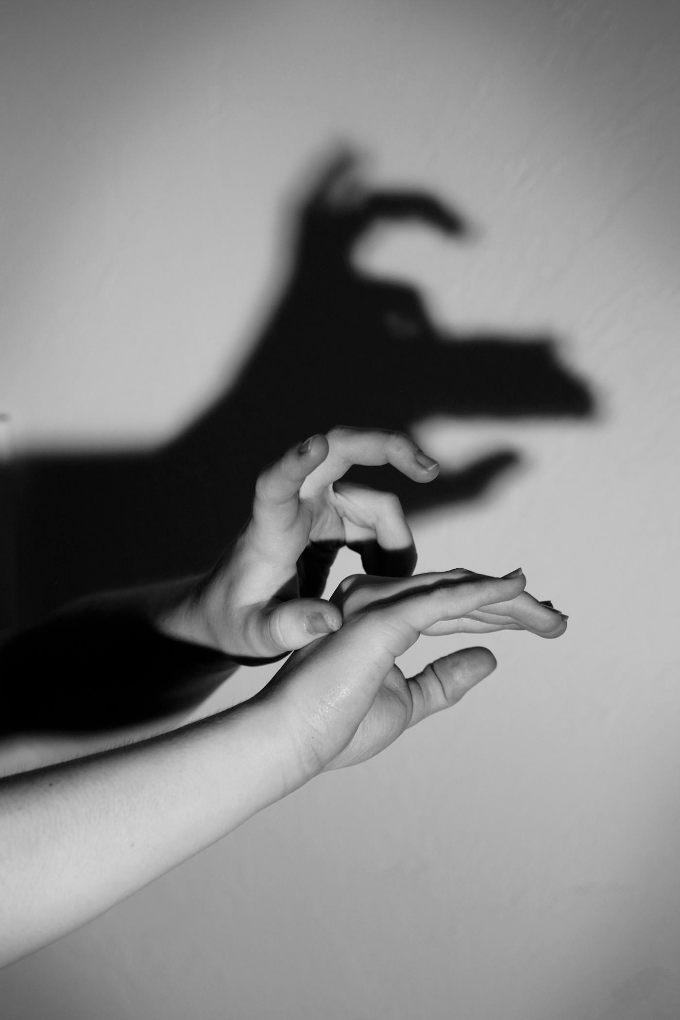 это фото животных руками тени для вас сфотографировал