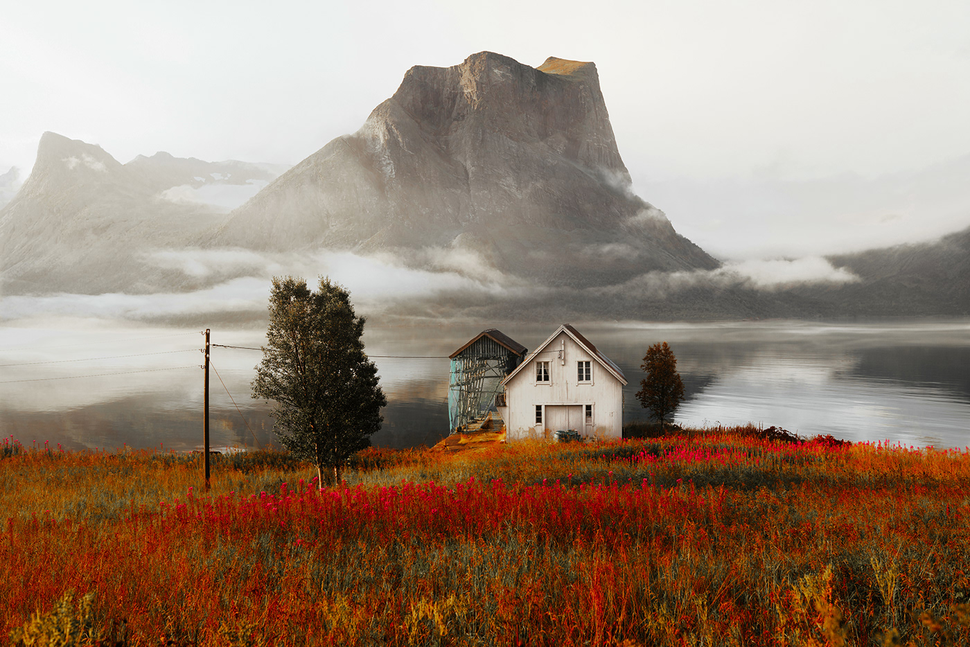Landscape lofoten mountains Nature north norway outdoors Scandinavia senja summer