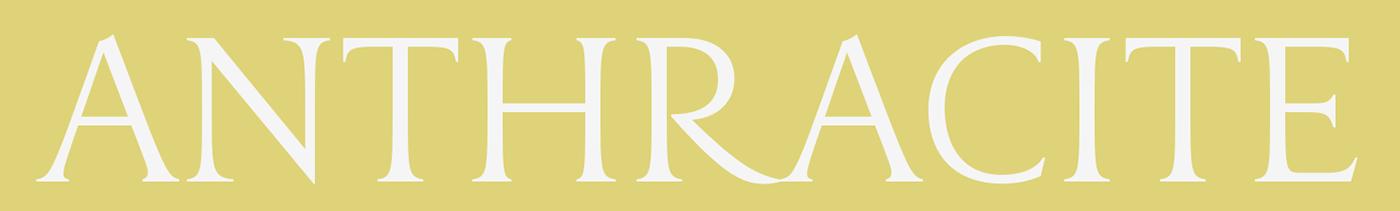 font capitalis monumentalis serif DSType Typeface contemporary