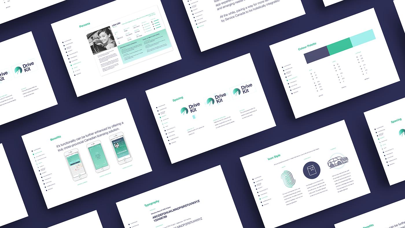ux UI app design branding  identity driver licence service Platform application