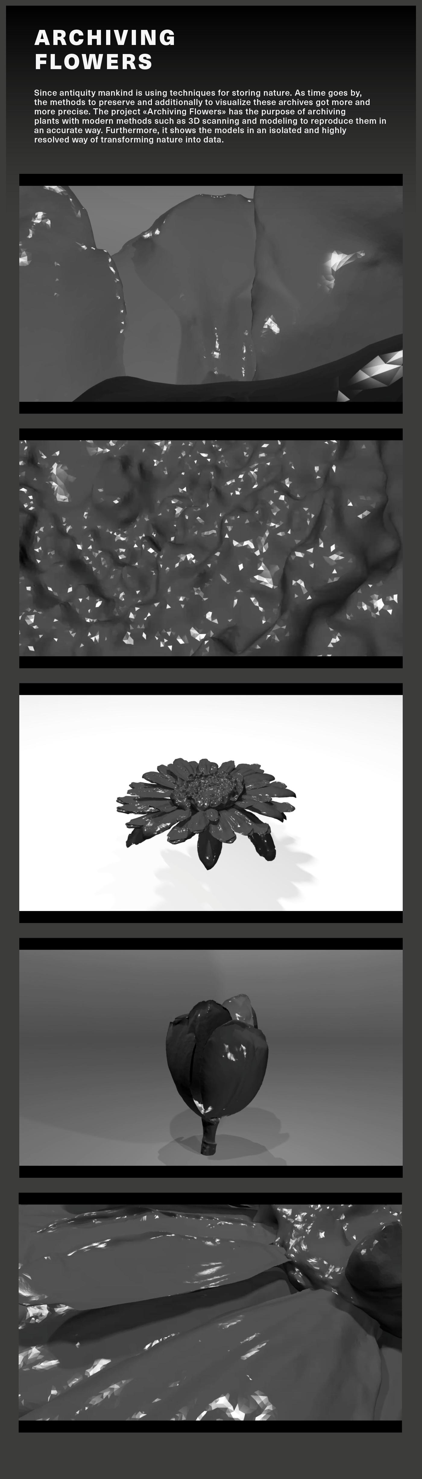 motion design Flowers 3D scanning